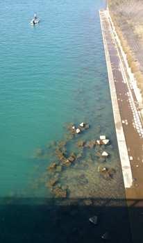 長良川2.jpg
